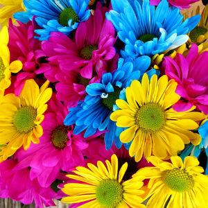 Mercado das Flores - Floriculturas e Arranjos no Centro - RJ