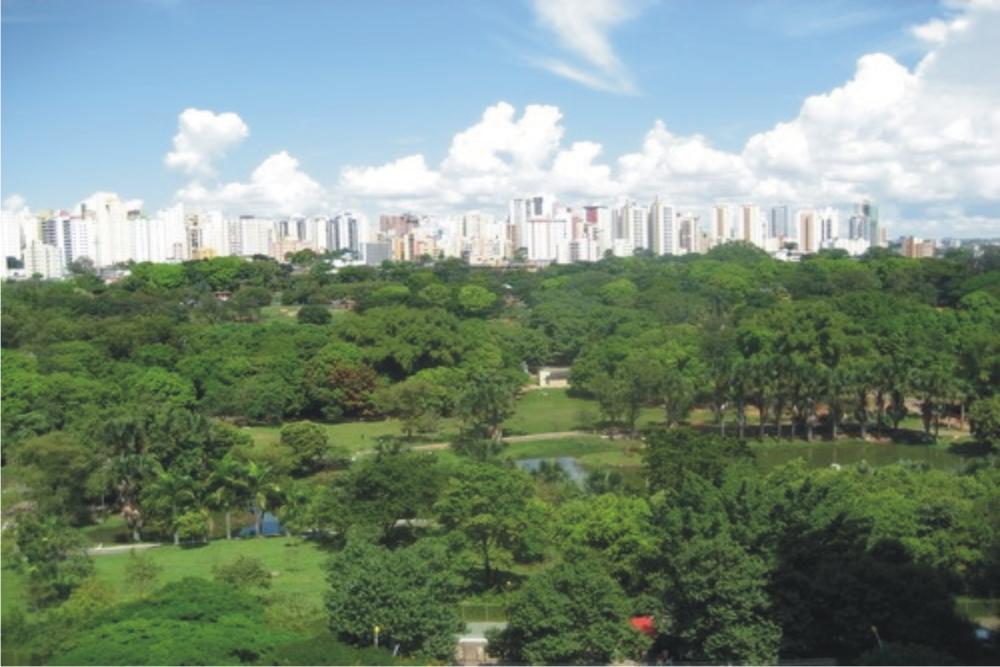 jardim vertical goiania:apartamentos,jardim goiás,apartamento goiânia,apartamentos jardim