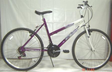 Bicicleta Infantil Aro 24